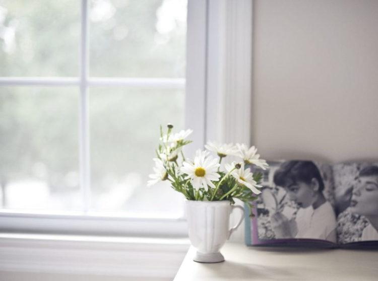 cveti v vase utrom